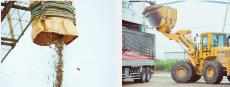 次世代のエネルギーとして注目の「木質バイオマス燃料」
